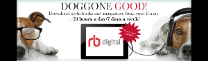 Rbdigital Magazin and Audiobook library link=